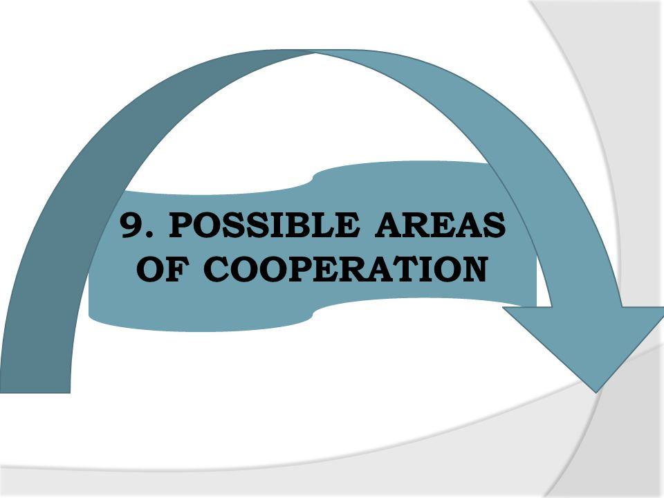 9. POSSIBLE AREAS OF COOPERATION