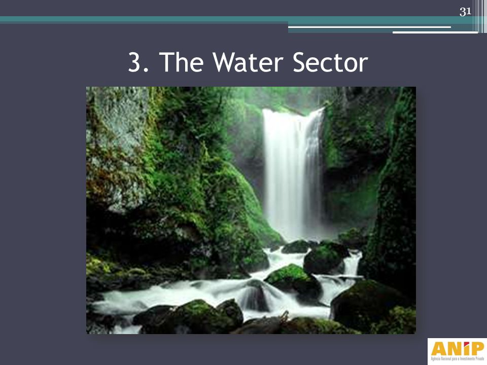 3. The Water Sector