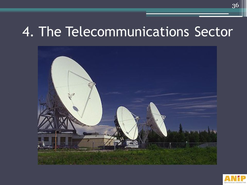 4. The Telecommunications Sector