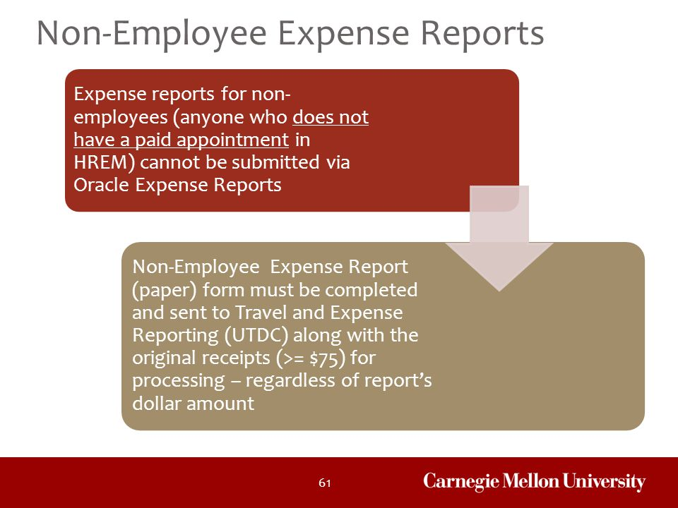 Non-Employee Expense Reports