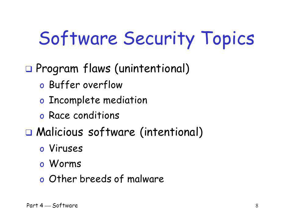 Software Security Topics