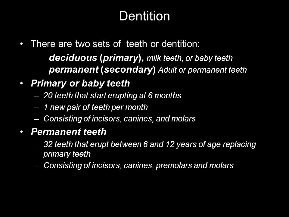 Dentition There are two sets of teeth or dentition: