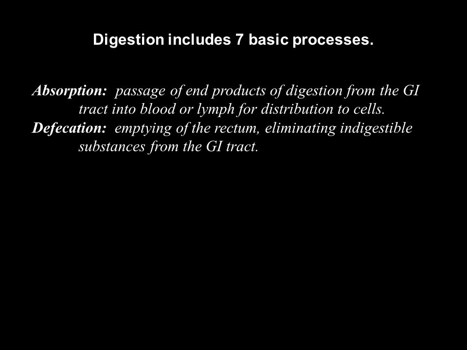 Digestion includes 7 basic processes.