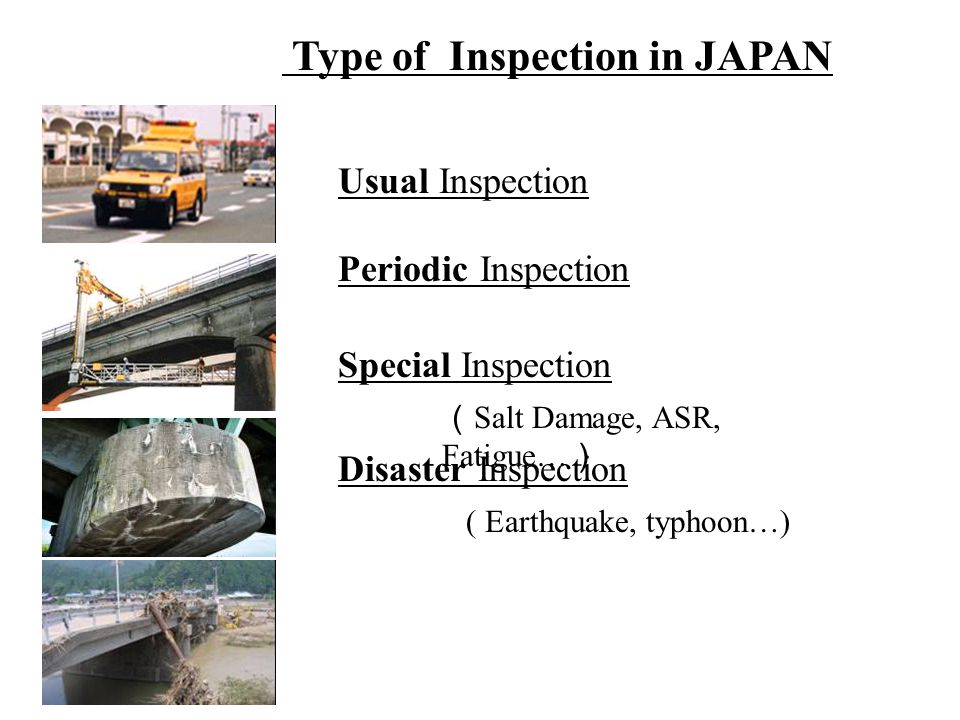 Type of Inspection in JAPAN