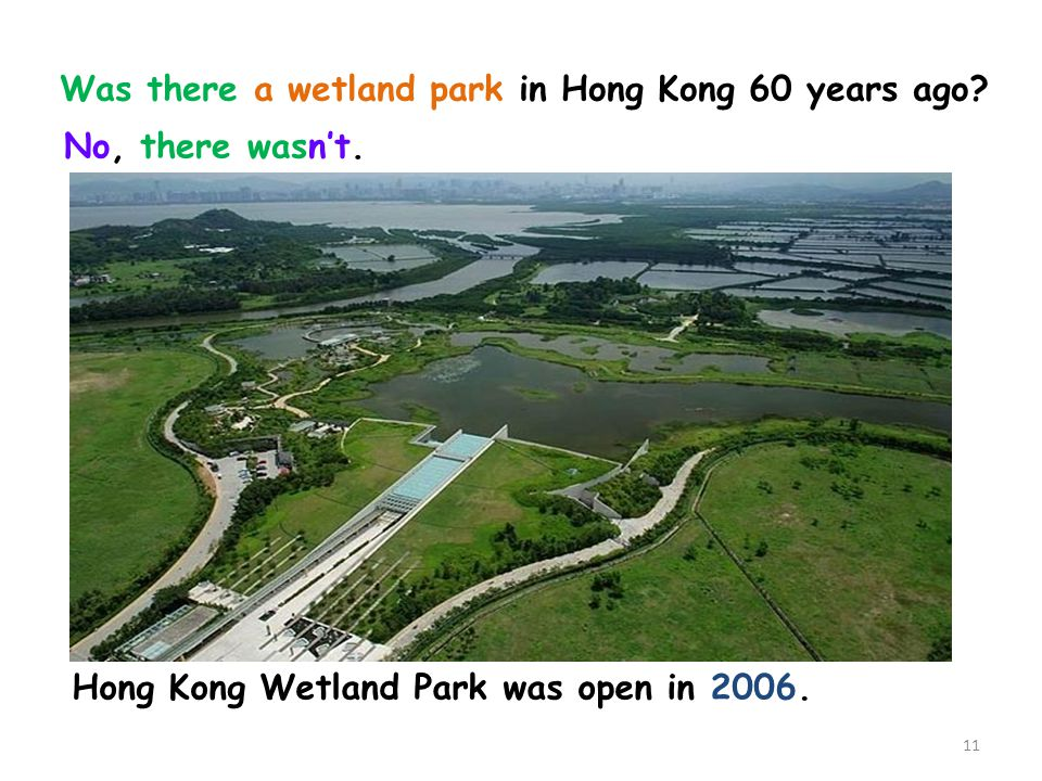 Was there a wetland park in Hong Kong 60 years ago