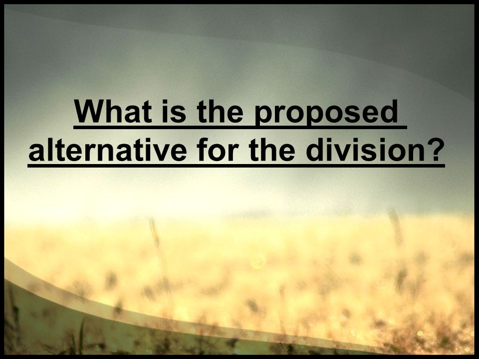 What is the proposed alternative for the division