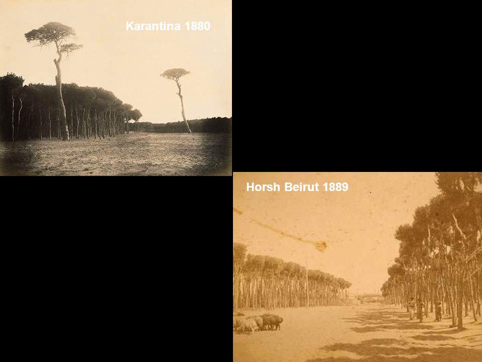 Karantina 1880 Horsh Beirut 1889