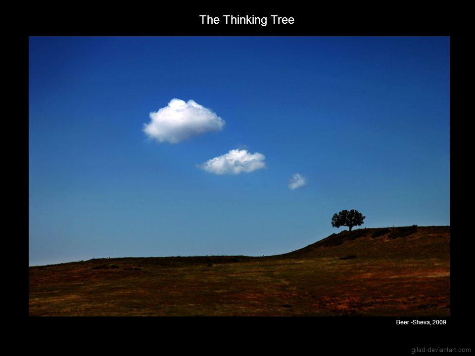 The Thinking Tree Beer -Sheva, 2009 gilad.deviantart.com