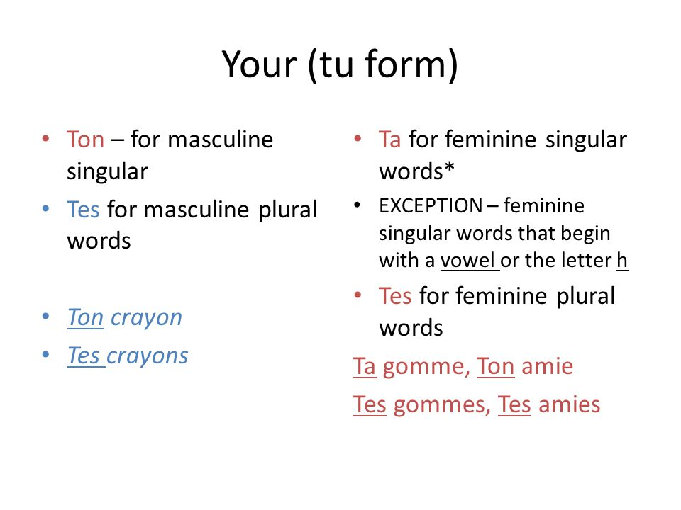 Your (tu form) Ton – for masculine singular