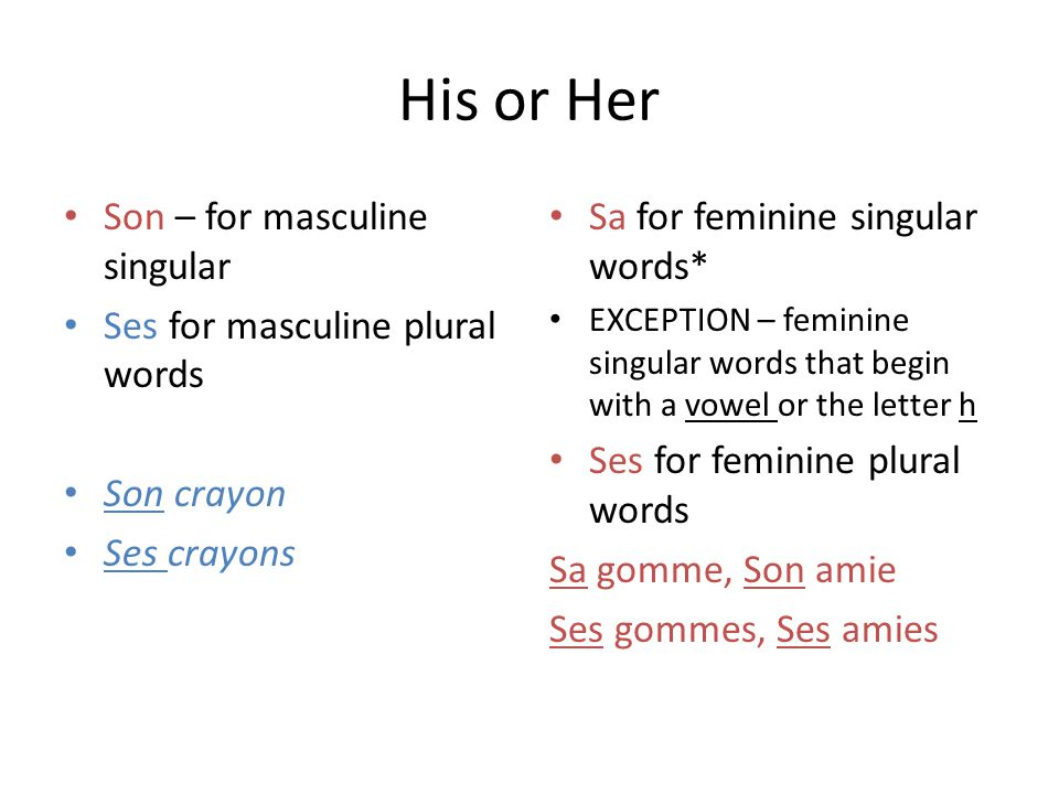 His or Her Son – for masculine singular Ses for masculine plural words