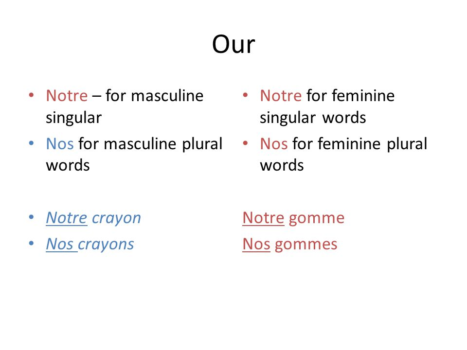 Our Notre – for masculine singular Nos for masculine plural words