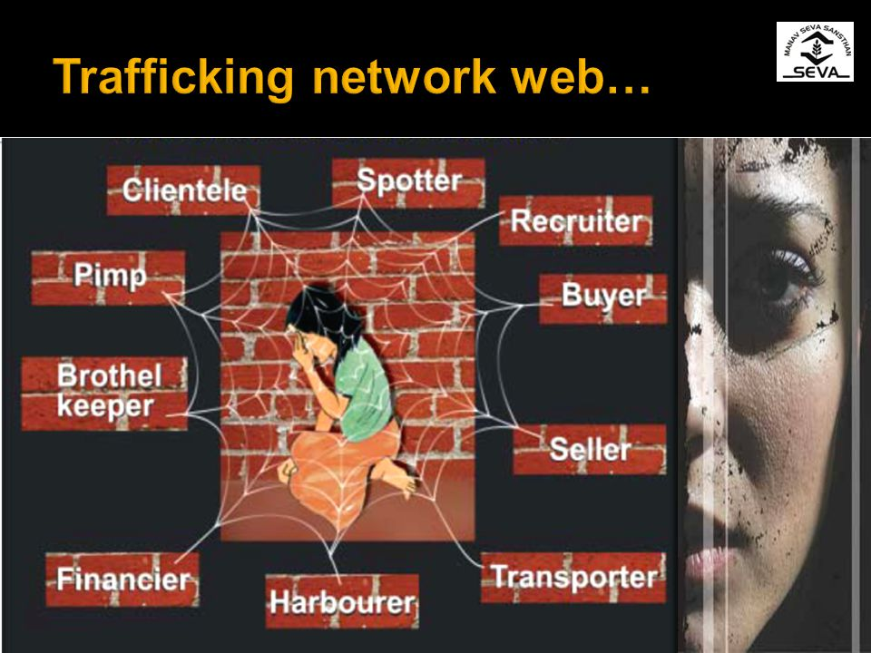 Trafficking network web…