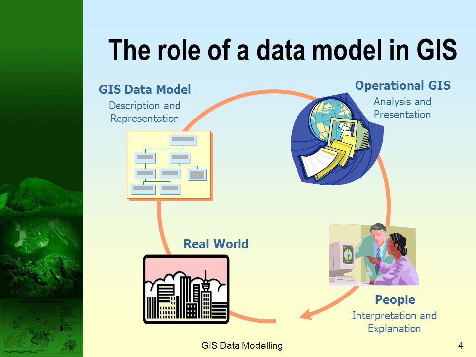 The role of a data model in GIS