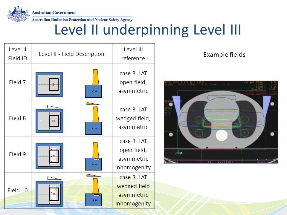 Level II - Field Description
