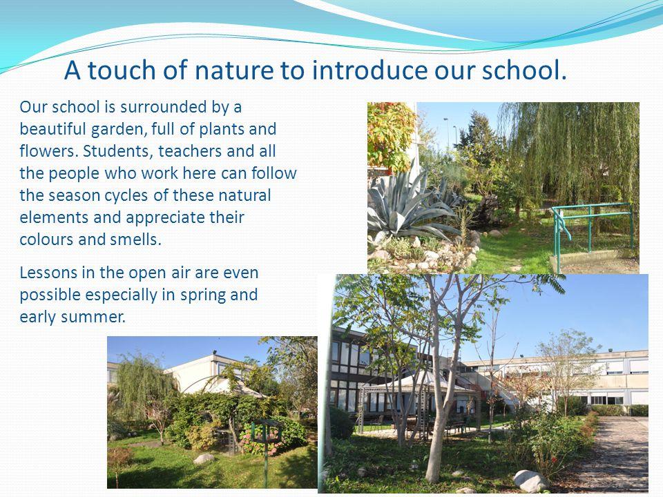 A touch of nature to introduce our school.