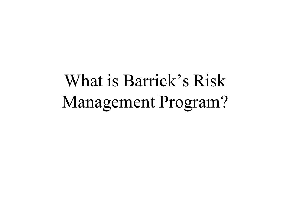 What is Barrick's Risk Management Program