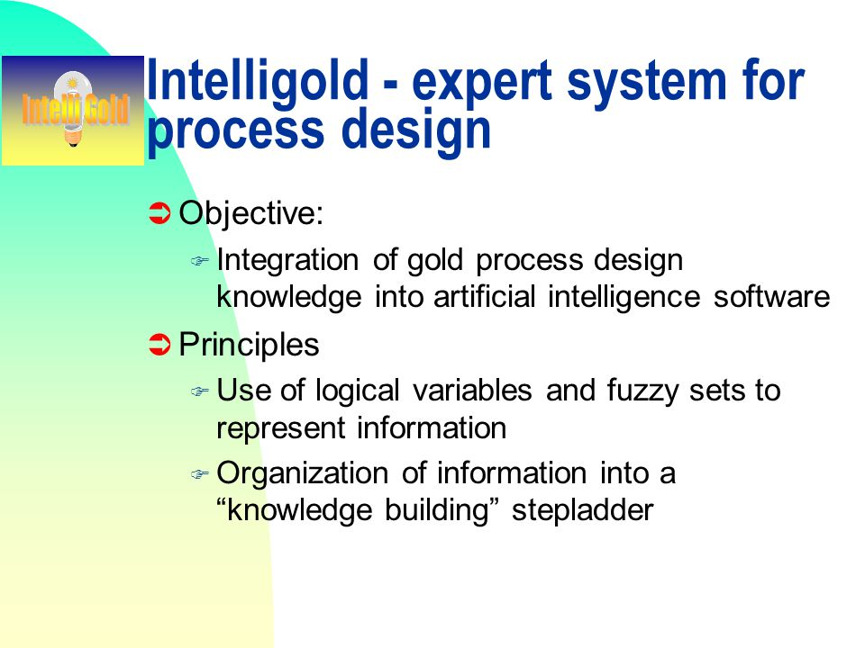 Intelligold - expert system for process design