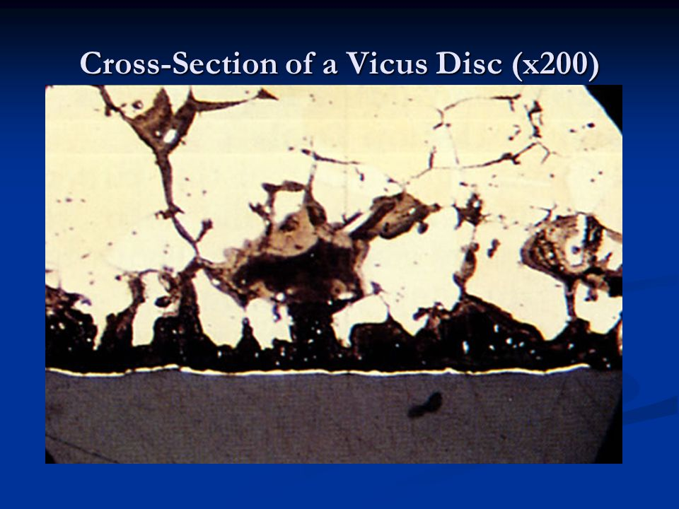 Cross-Section of a Vicus Disc (x200)