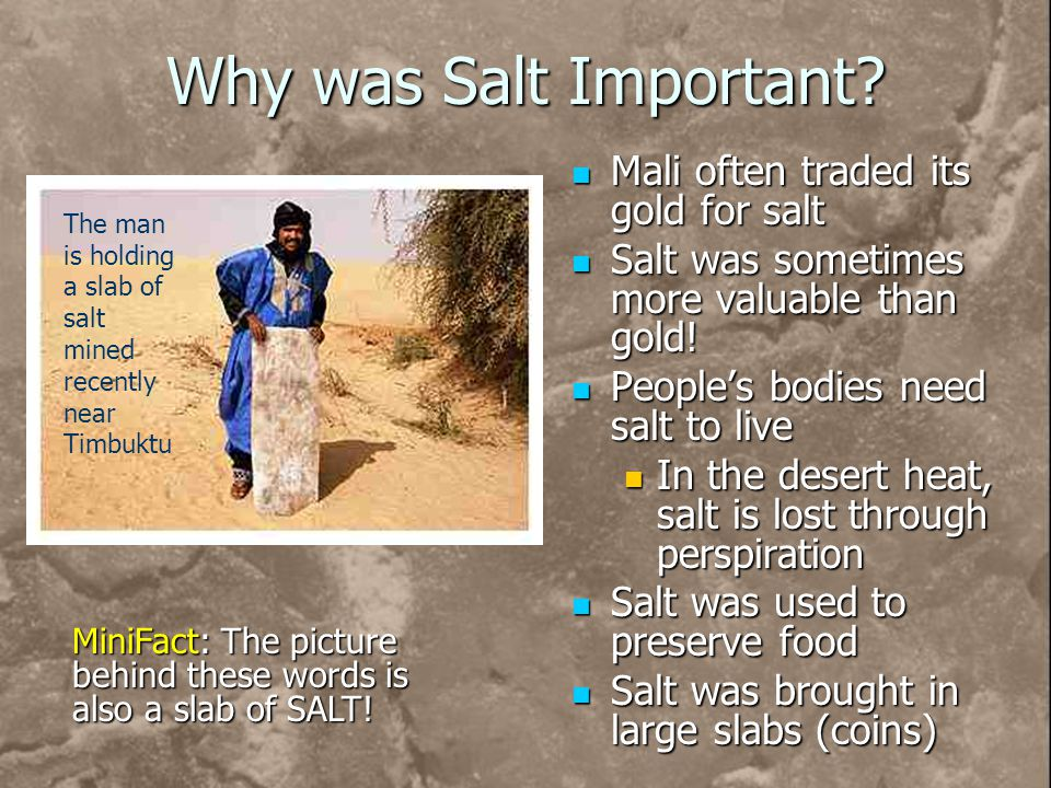 Why was Salt Important Mali often traded its gold for salt