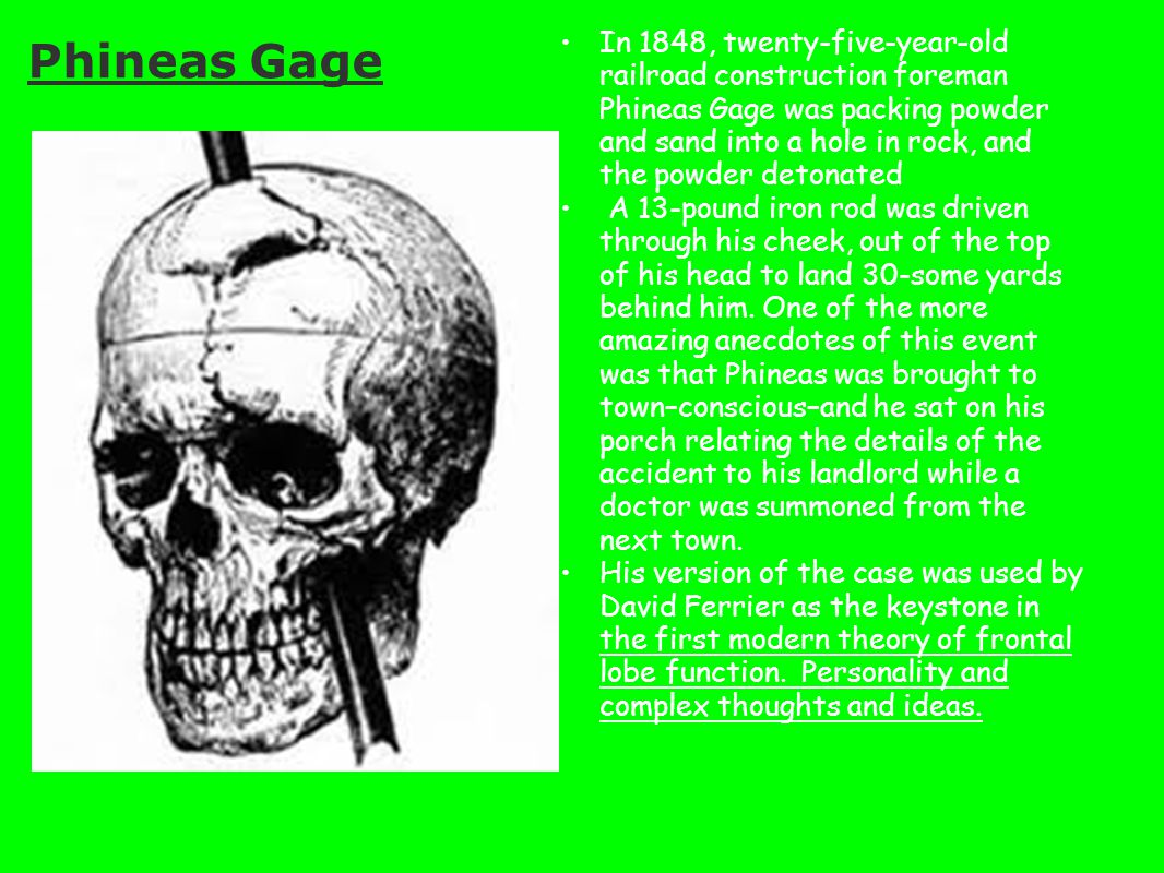 In 1848, twenty-five-year-old railroad construction foreman Phineas Gage was packing powder and sand into a hole in rock, and the powder detonated