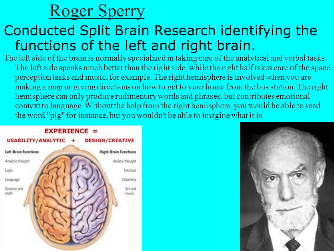 Roger Sperry Conducted Split Brain Research identifying the functions of the left and right brain.