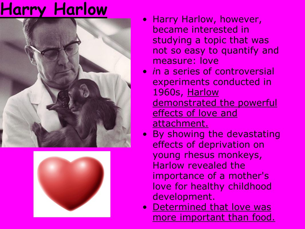 Harry Harlow Harry Harlow, however, became interested in studying a topic that was not so easy to quantify and measure: love.