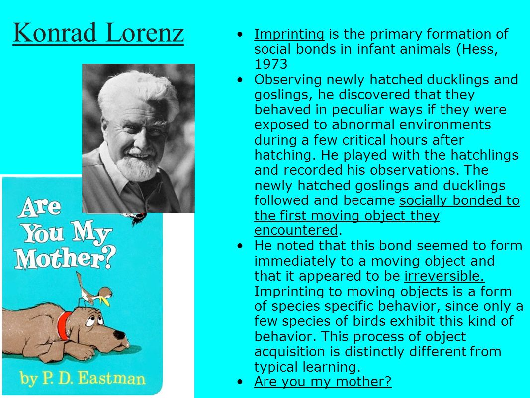 Konrad Lorenz Imprinting is the primary formation of social bonds in infant animals (Hess, 1973.