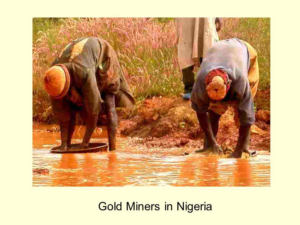 Gold Miners in Nigeria