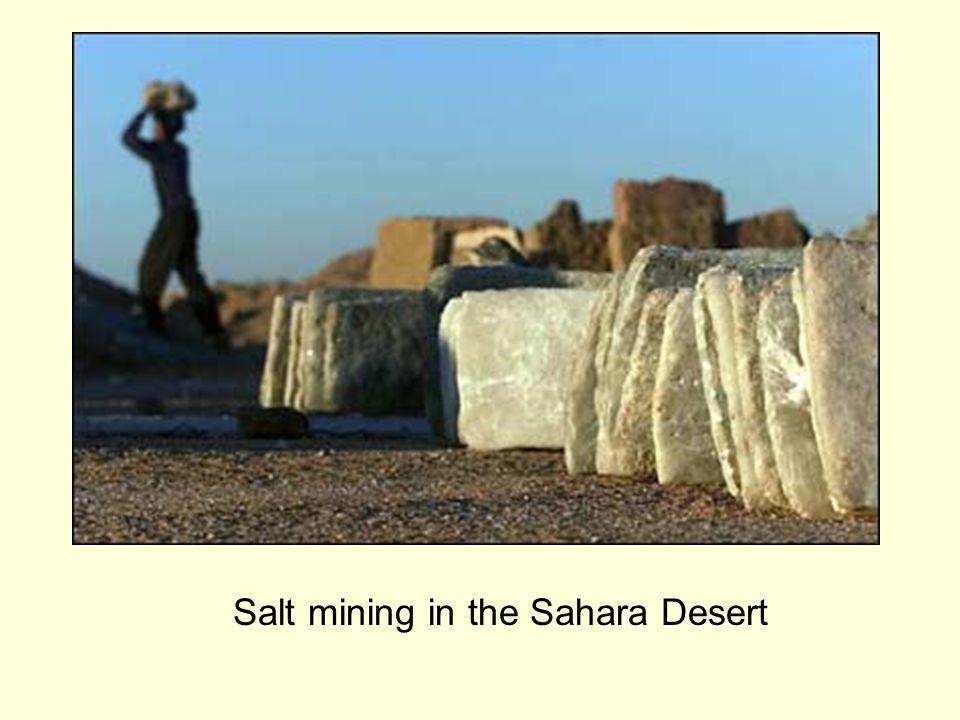 Salt mining in the Sahara Desert