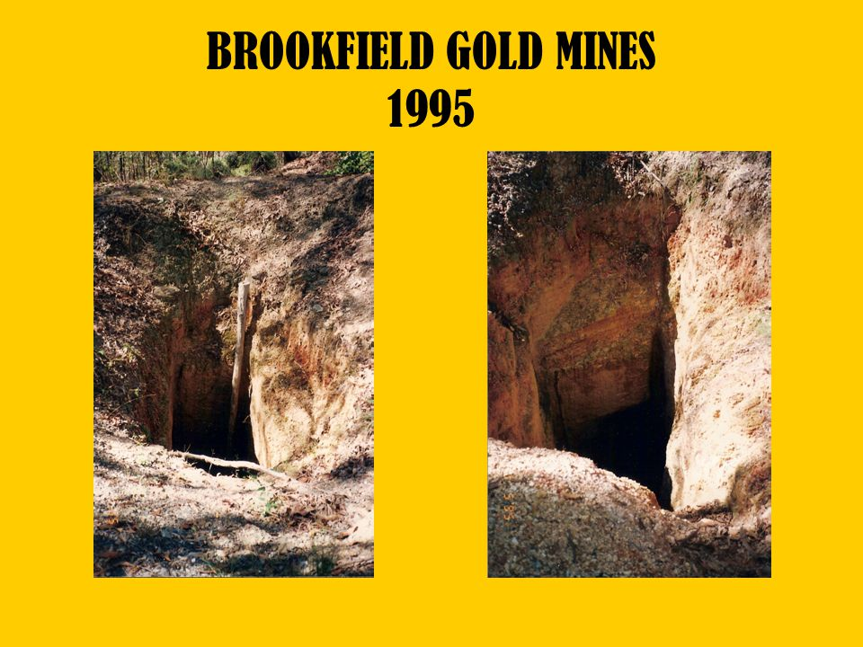 BROOKFIELD GOLD MINES 1995