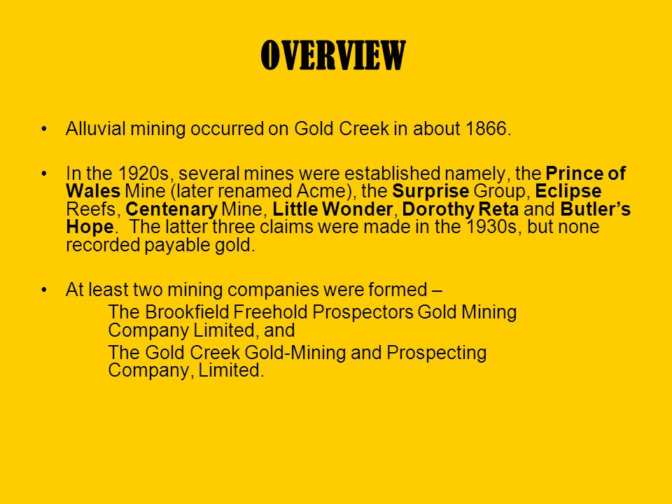 OVERVIEW Alluvial mining occurred on Gold Creek in about 1866.