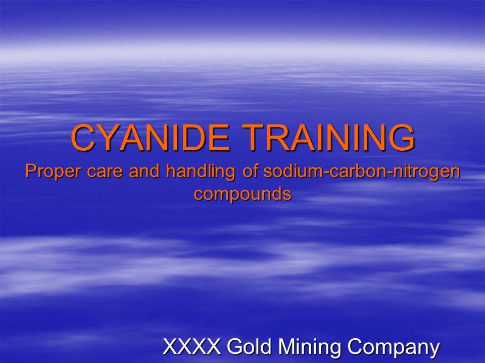 XXXX Gold Mining Company