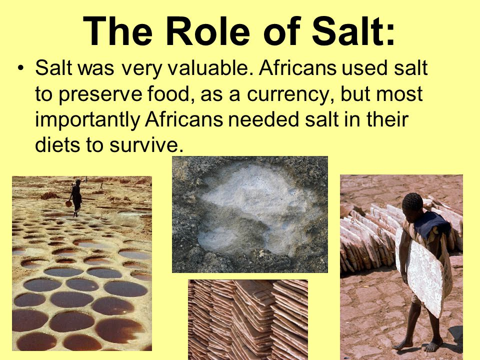 The Role of Salt: