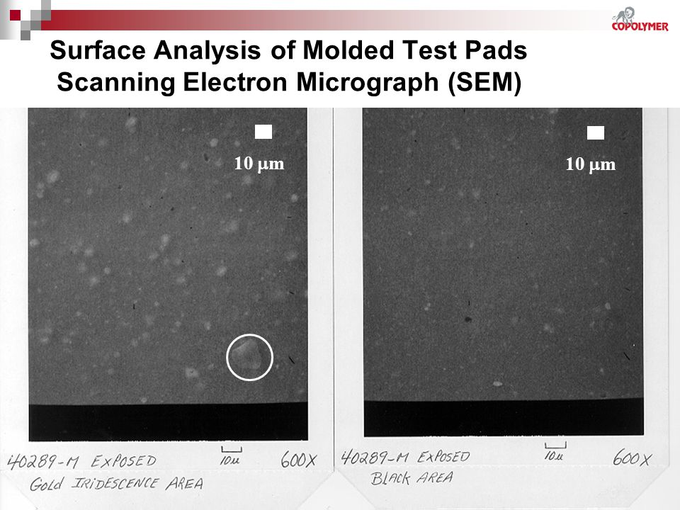 Surface Analysis of Molded Test Pads Scanning Electron Micrograph (SEM)