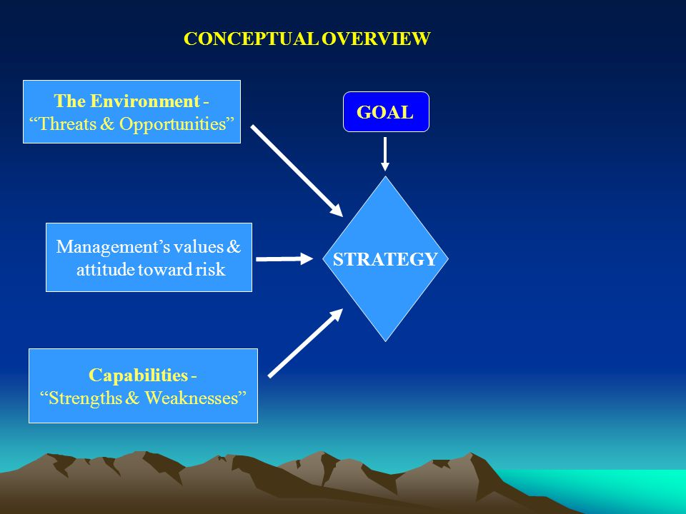 CONCEPTUAL OVERVIEW GOAL STRATEGY