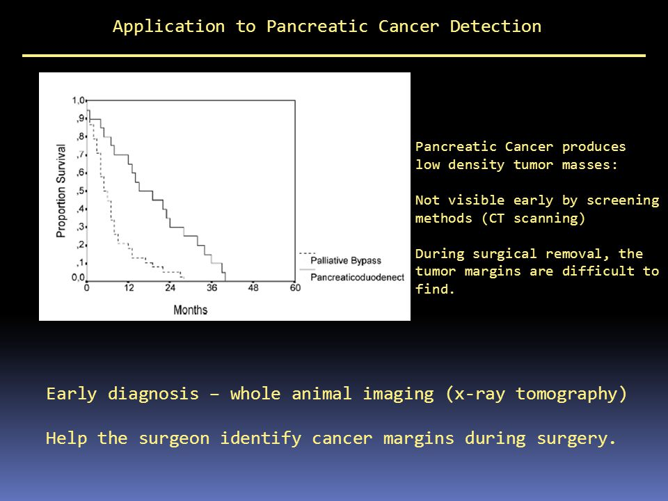 Application to Pancreatic Cancer Detection