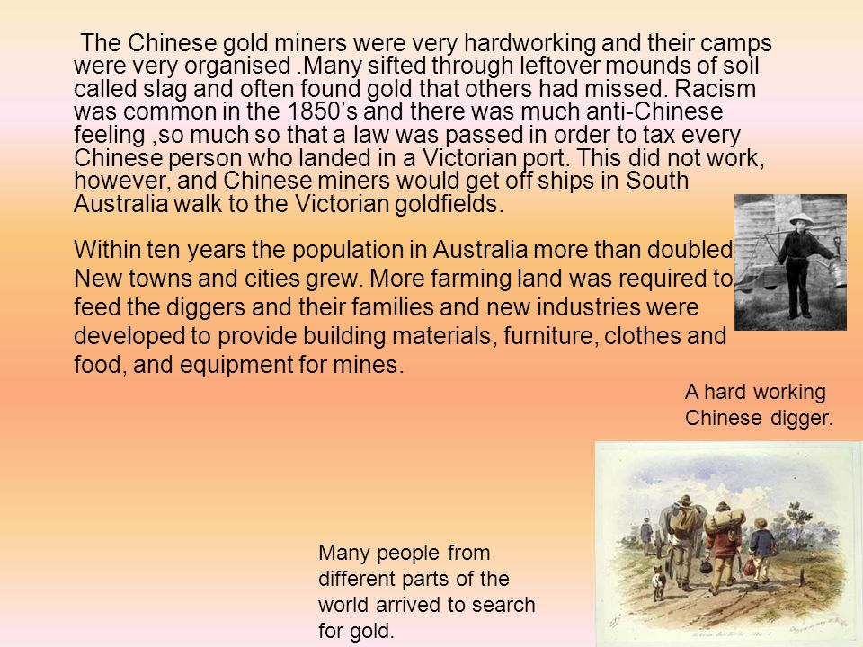 The Chinese gold miners were very hardworking and their camps were very organised .Many sifted through leftover mounds of soil called slag and often found gold that others had missed. Racism was common in the 1850's and there was much anti-Chinese feeling ,so much so that a law was passed in order to tax every Chinese person who landed in a Victorian port. This did not work, however, and Chinese miners would get off ships in South Australia walk to the Victorian goldfields.