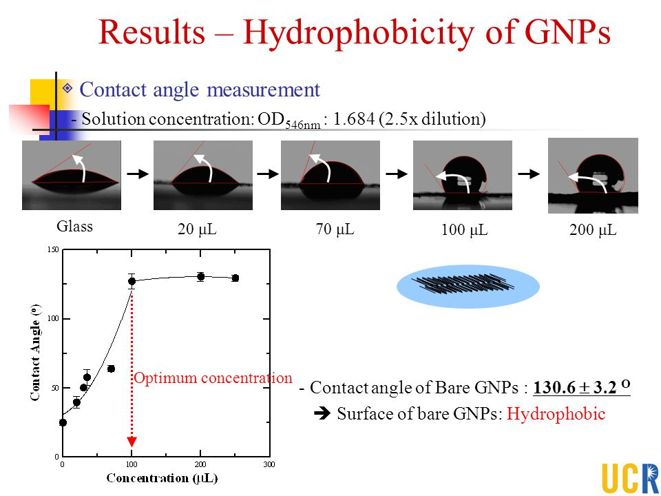 Results – Hydrophobicity of GNPs