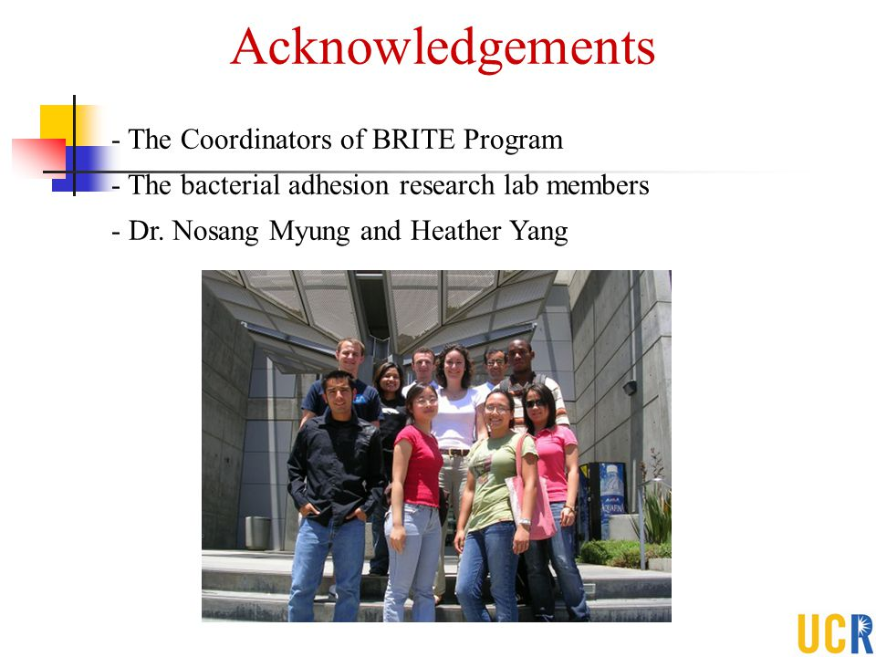 Acknowledgements The Coordinators of BRITE Program
