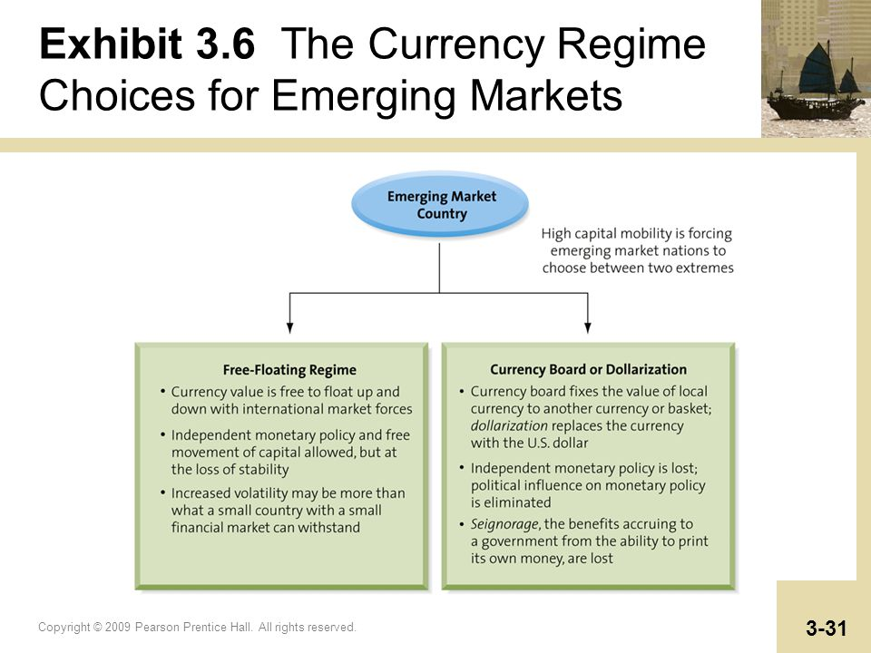 Exhibit 3.6 The Currency Regime Choices for Emerging Markets