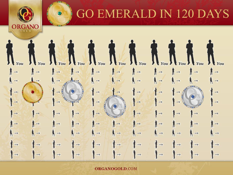 GO EMERALD IN 120 DAYS