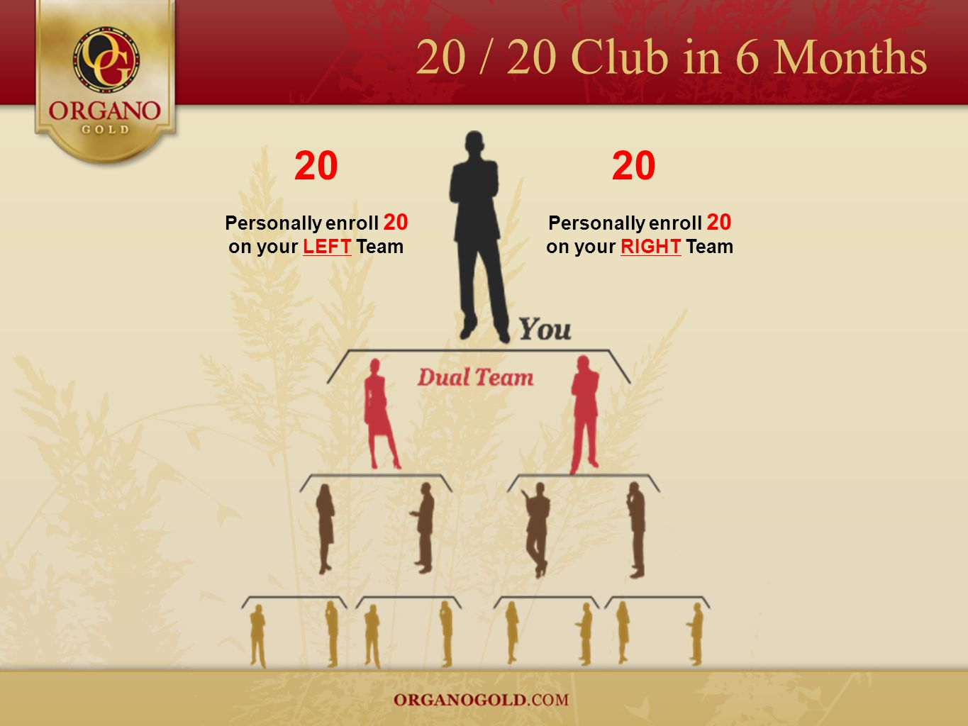 20 / 20 Club in 6 Months 20 20 Personally enroll 20 on your LEFT Team