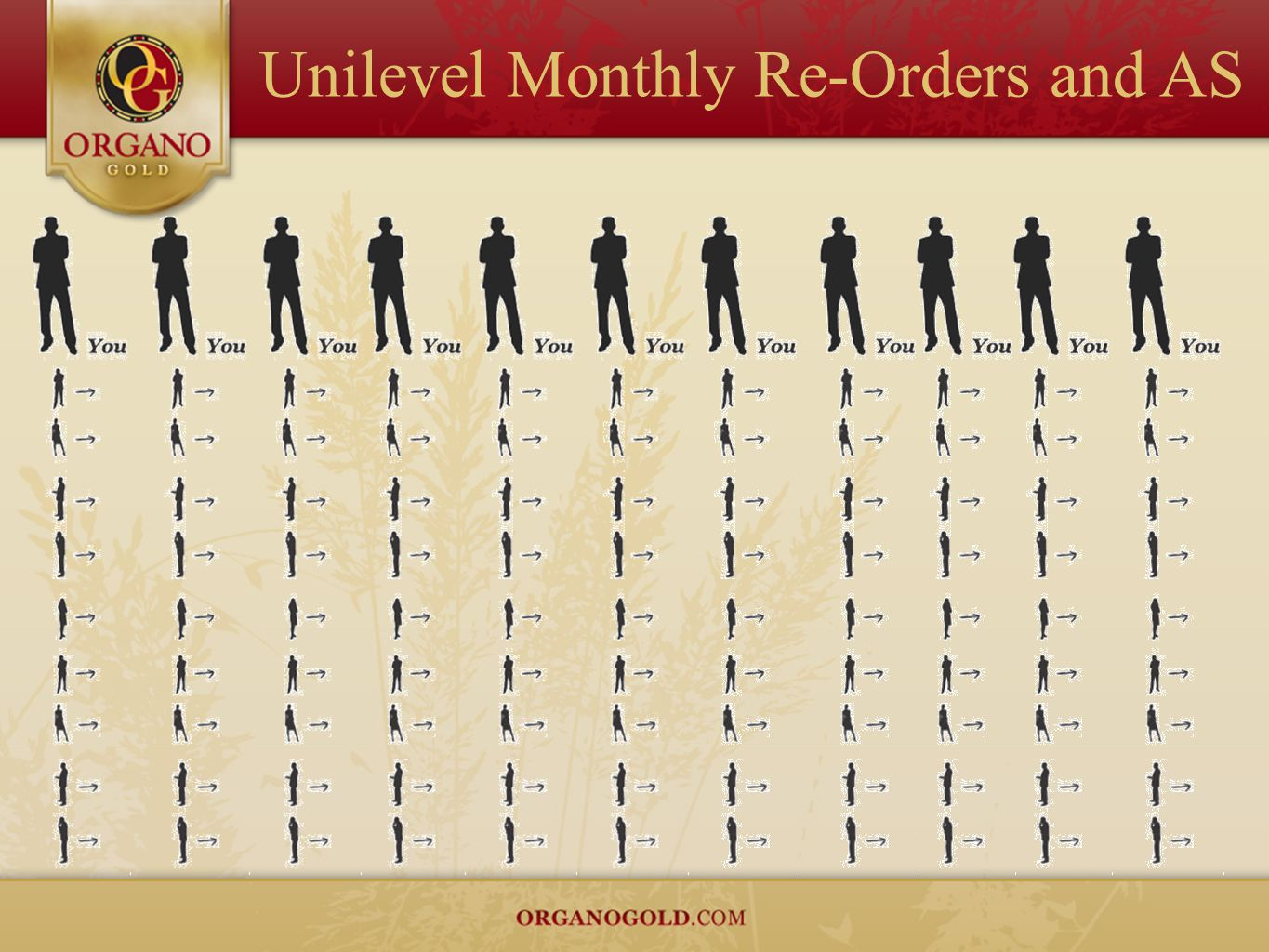 Unilevel Monthly Re-Orders and AS