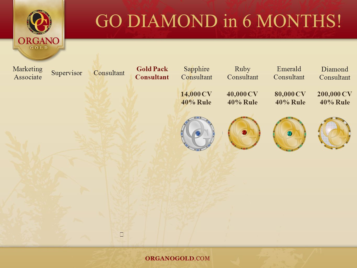 GO DIAMOND in 6 MONTHS! Marketing Associate Gold Pack Consultant