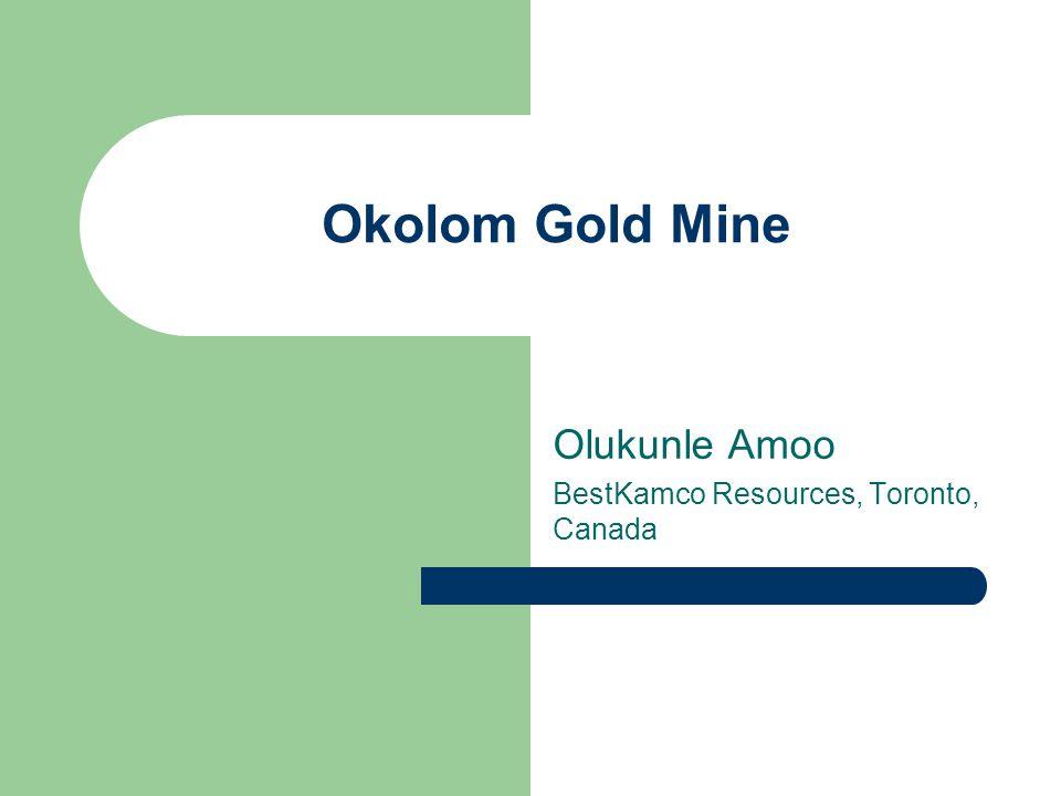 Olukunle Amoo BestKamco Resources, Toronto, Canada