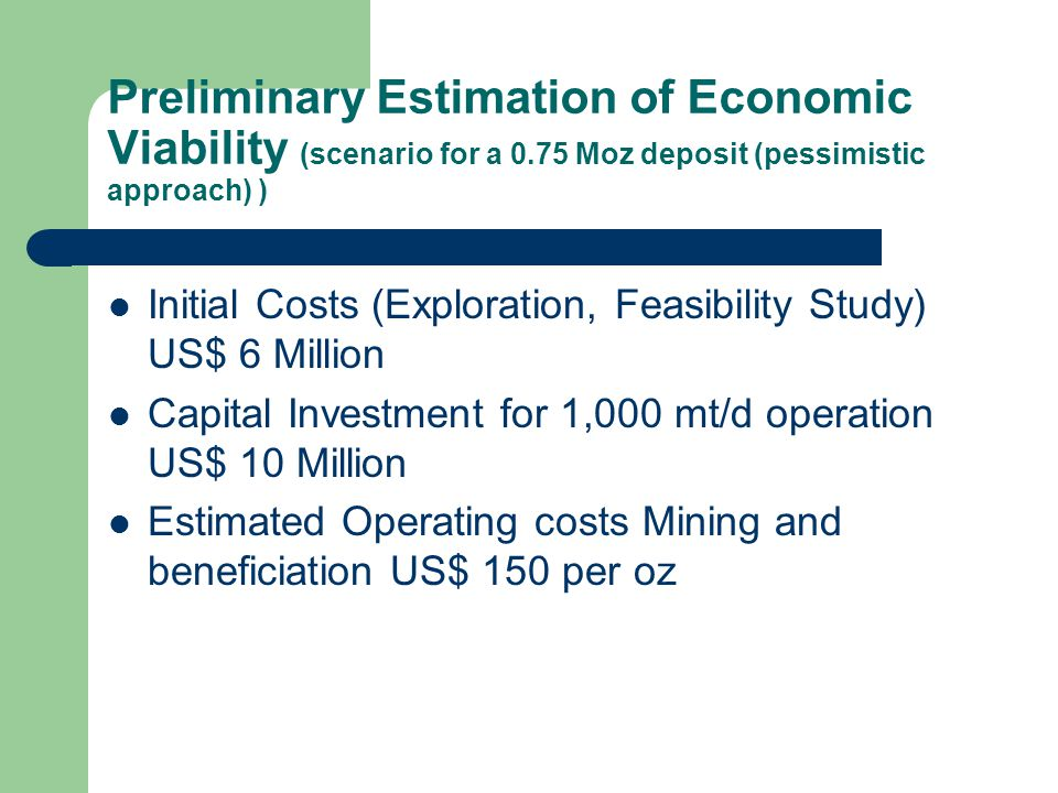 Preliminary Estimation of Economic Viability (scenario for a 0