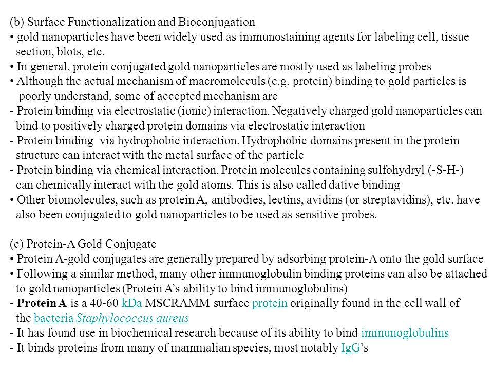 (b) Surface Functionalization and Bioconjugation