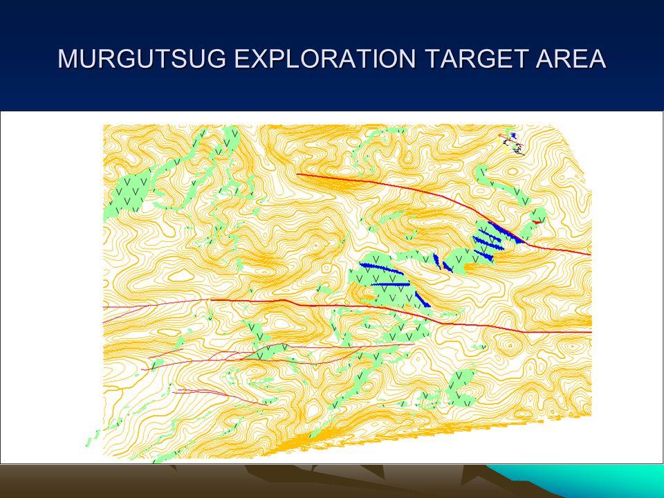 MURGUTSUG EXPLORATION TARGET AREA