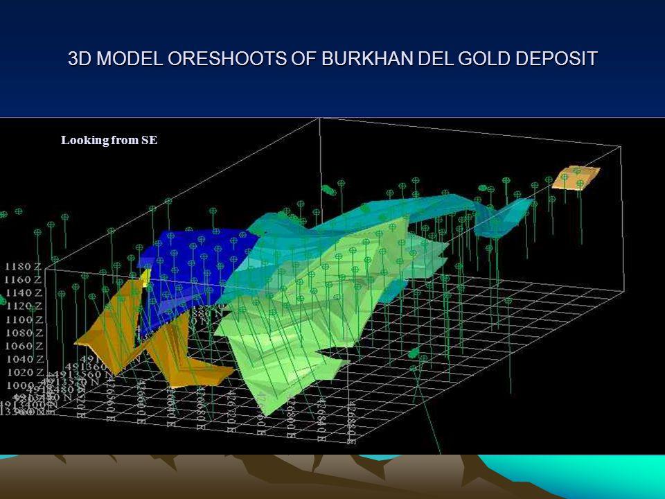 3D MODEL ORESHOOTS OF BURKHAN DEL GOLD DEPOSIT