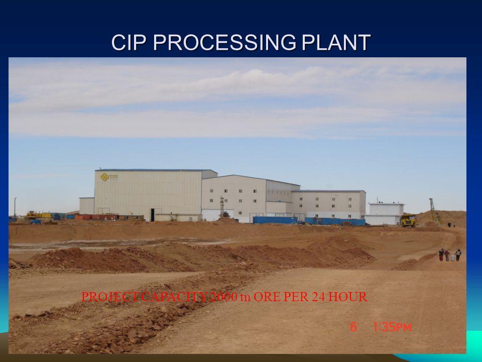 CIP PROCESSING PLANT PROJECT CAPACITY 2000 tn ORE PER 24 HOUR